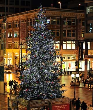 westlake center tree seattle