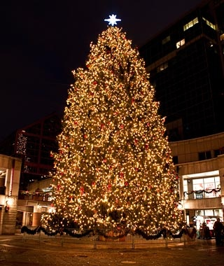 faneuil hall tree boston - How To Decorate A Big Christmas Tree