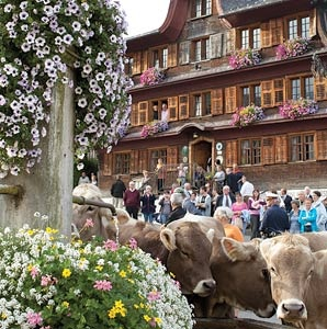 201104-a-insider-switzerland-austria