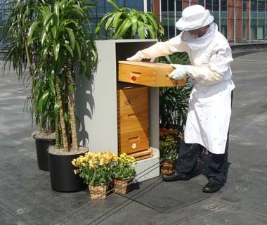 Urban BeekeeperInterContinental Boston