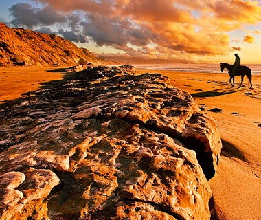 2011-w-sunsets-horse