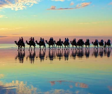 2011-w-sunsets-camels