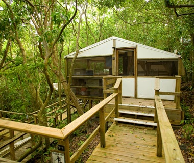 Eco-Friendly Resorts