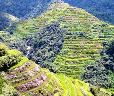 Philippines: Rice Terraces