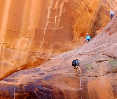Head into the Wild: American Southwest
