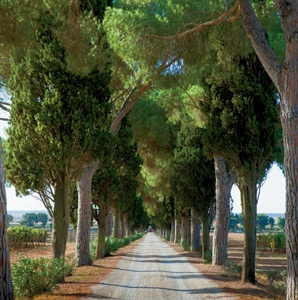 201204-a-features-tuscany_s-secret-coast