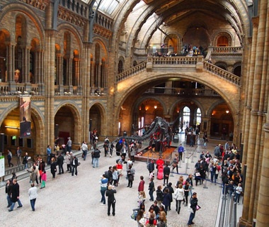 visitors at the Natural History Museum in London, England