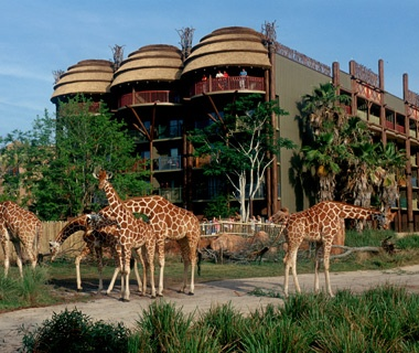 No. 4 Disney's Animal Kingdom Lodge