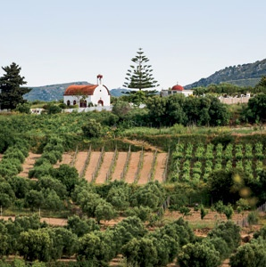 201208-a-europes-new-wine-country-greece
