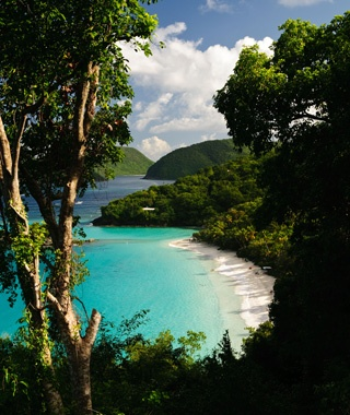 U.S. Virgin Islands Cove