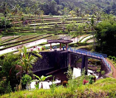 Bali Province's Subak System, Indonesia
