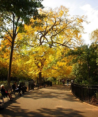 No. 20 Tompkins Square Park, New York City