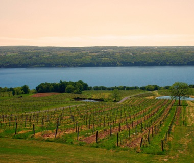 Wine Tasting in the Finger Lakes, NY