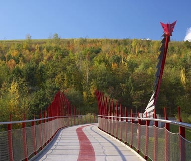 Dragon Pedestrian Bridge: Germany
