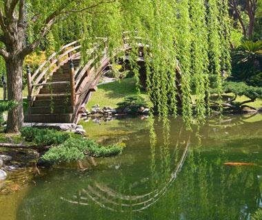 Moon Bridge: Japanese Tea Garden, San Francisco