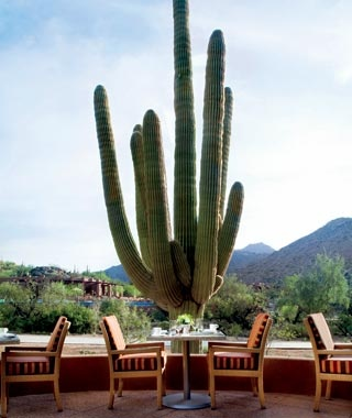 No. 15 The Ritz-Carlton, Dove Mountain, Tucson, AZ