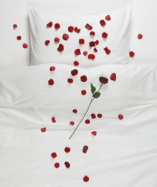 Rose Petals in the Bed or Bath
