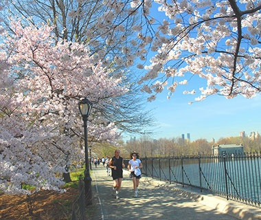 Central Park Reservoir and Outer Loop, New York City