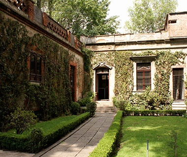 Romantic Getaway in Mexico City's Coyoacán Neighborhood