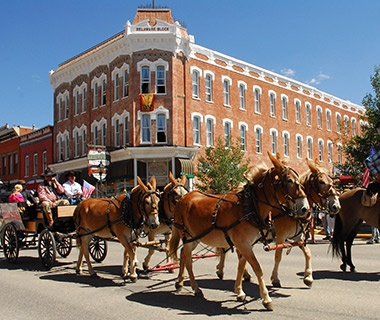 horse pulled carriage in Leadville, CO