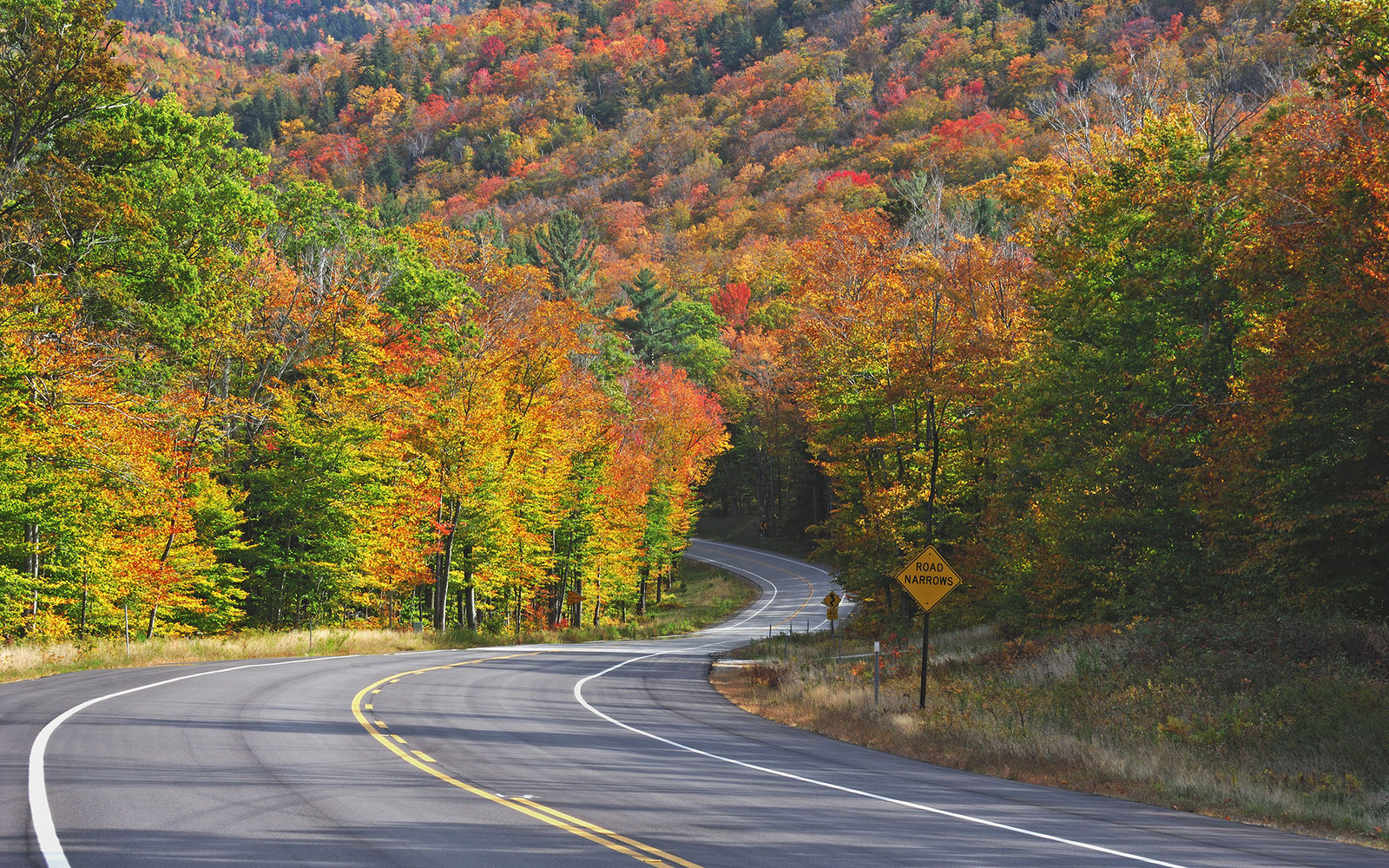 fall foliage in Kancamagus Highway, New Hampshire