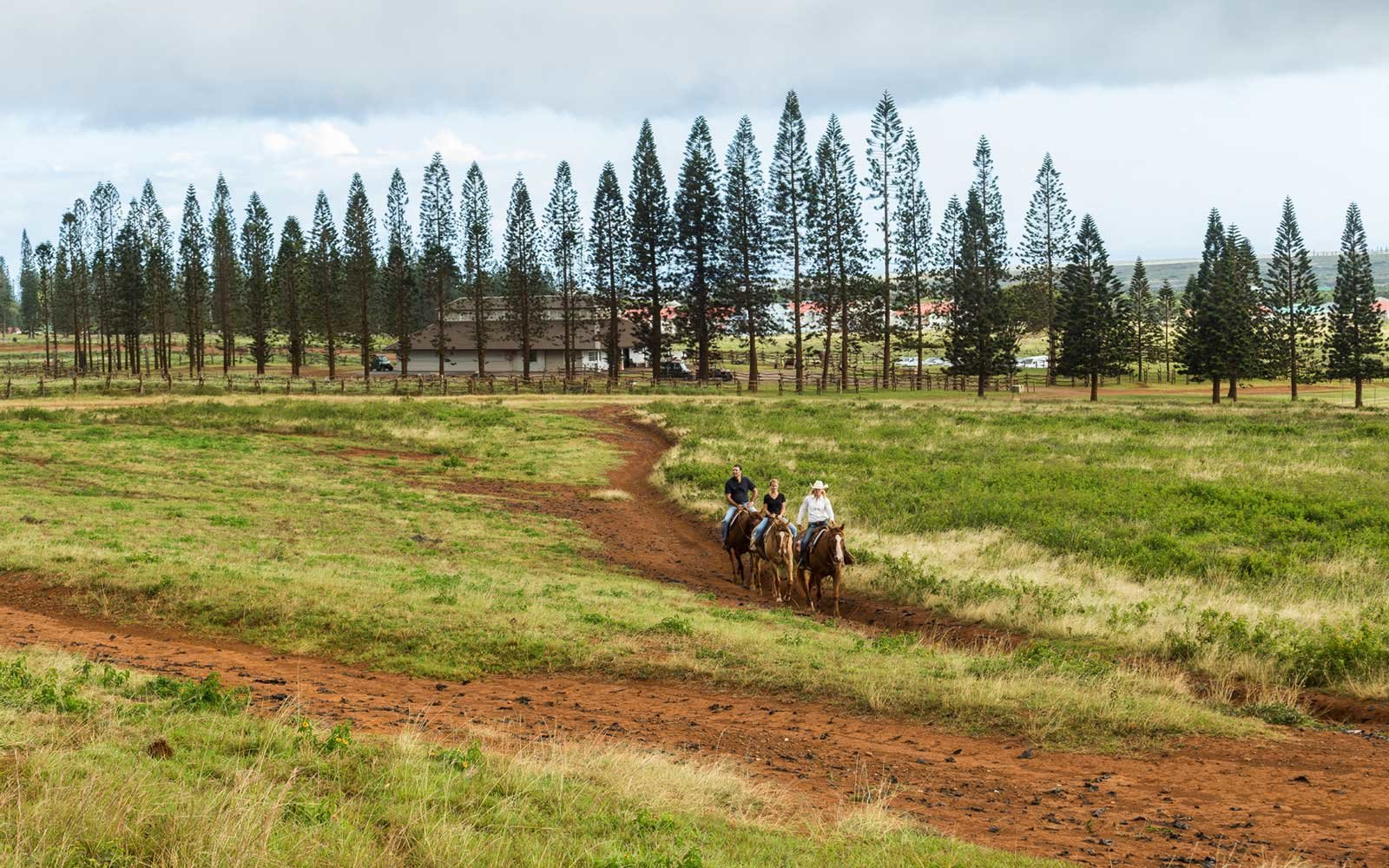 Horseback riding in Lanai, Hawaii