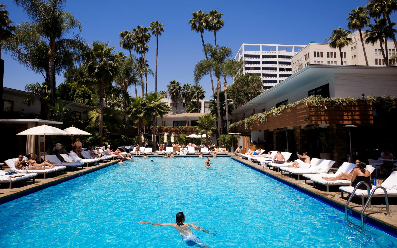 Best hotel pools in los angeles travel leisure for Best hotel pools