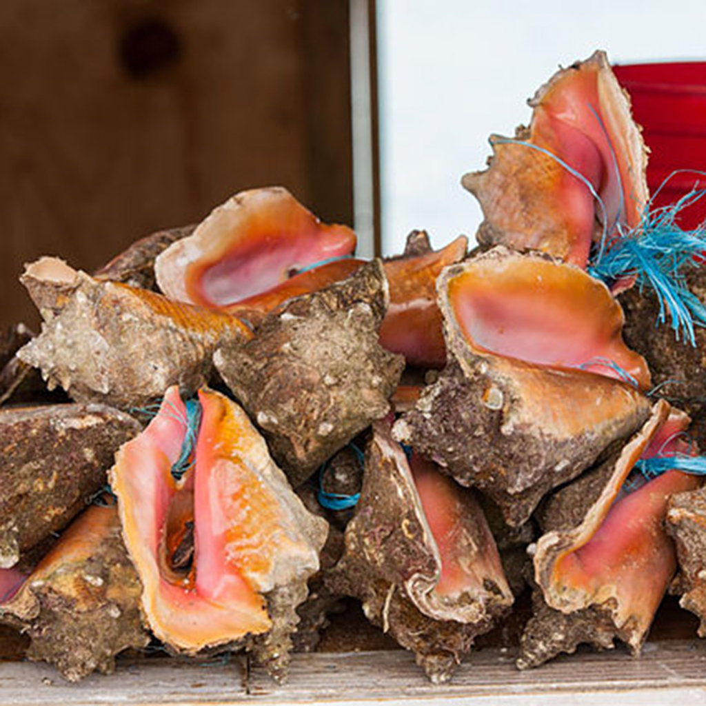 Best Seafood Restaurants in the Bahamas
