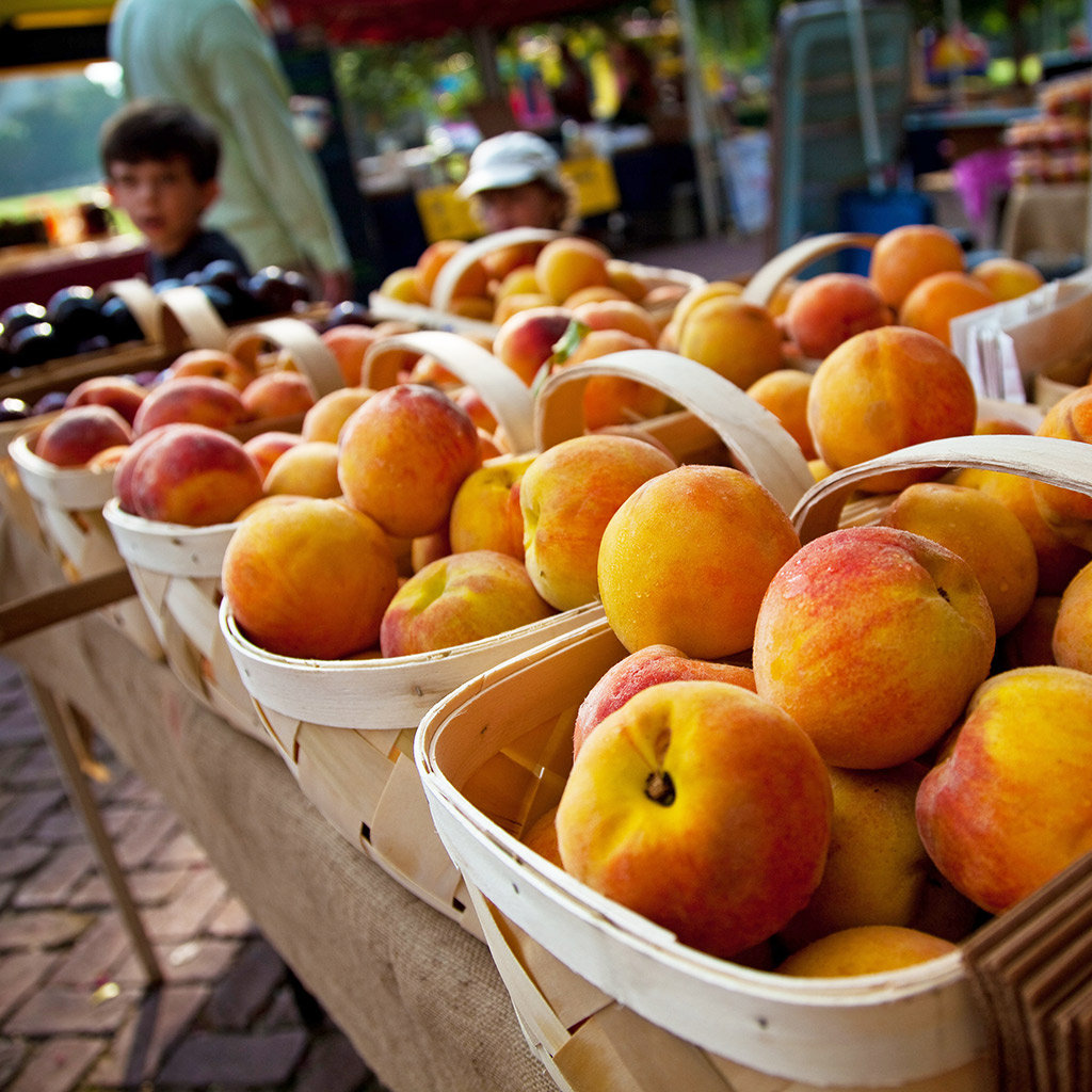 Best Farmers' Markets In Charleston