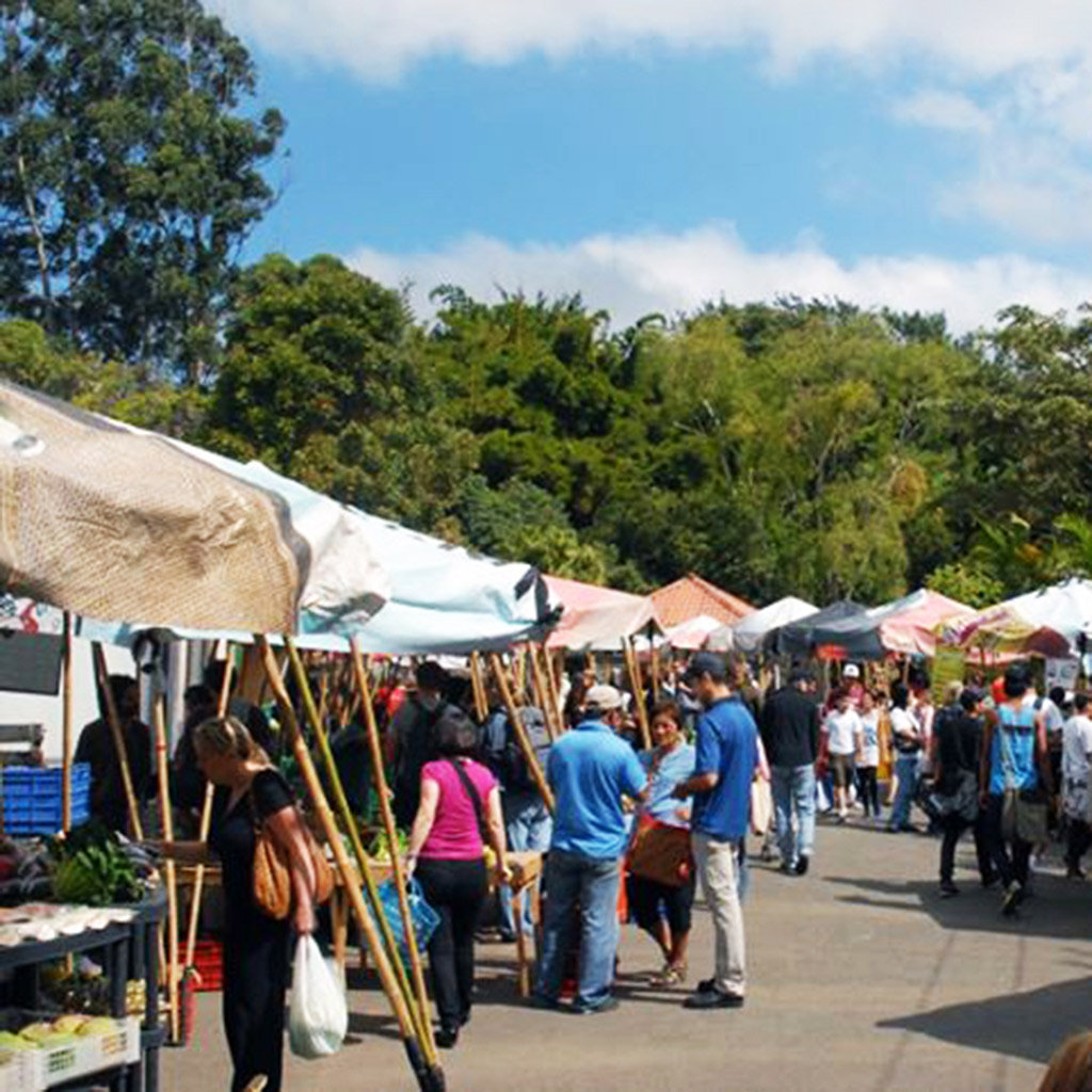 What to Do on a Budget in San José