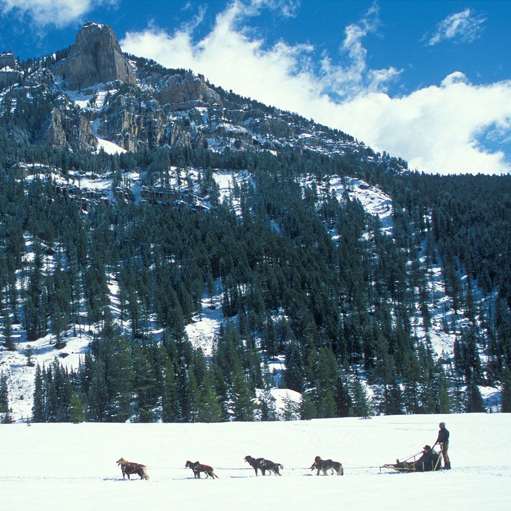 Activities for Non-Skiers in Jackson Hole
