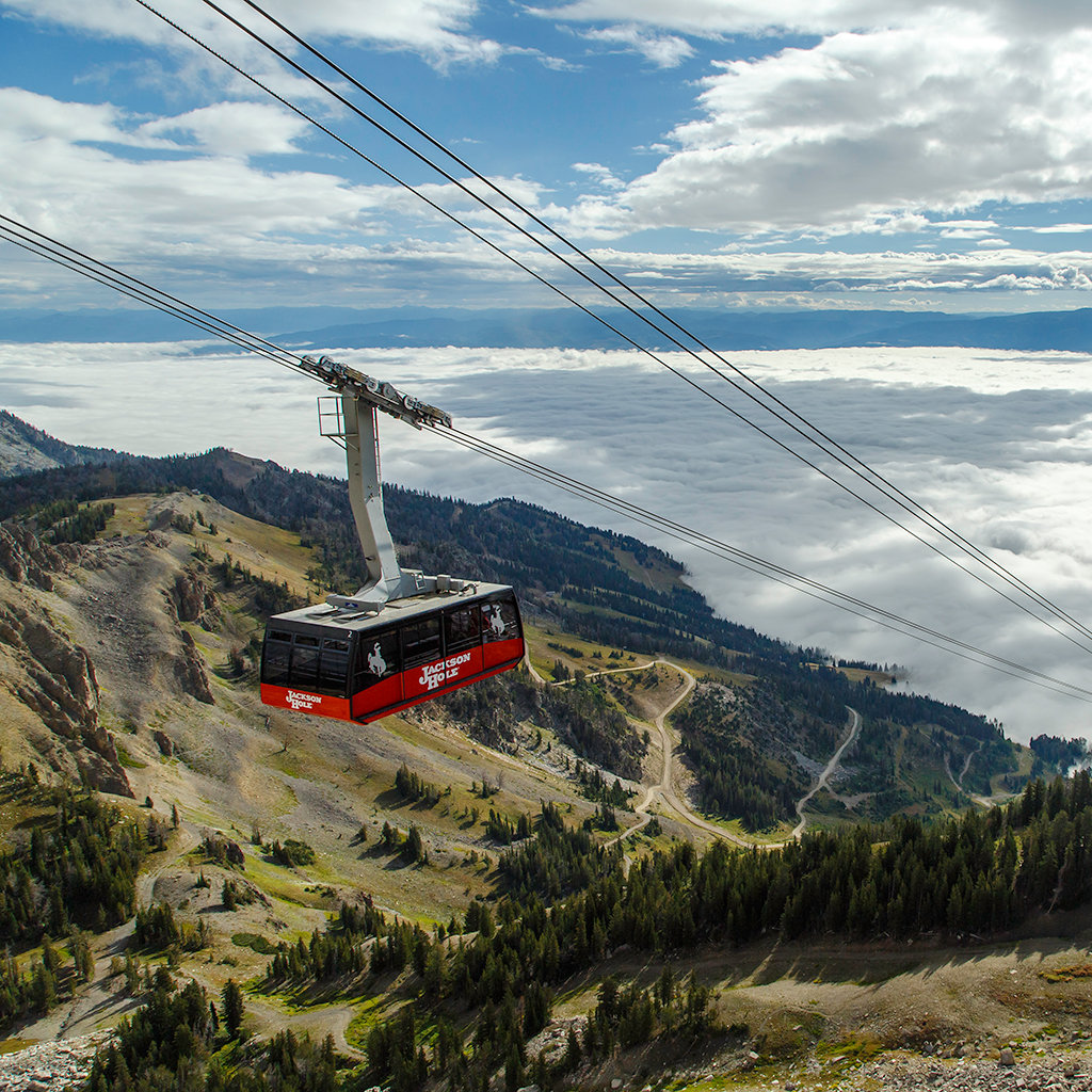 Things to Do for Families in Jackson Hole