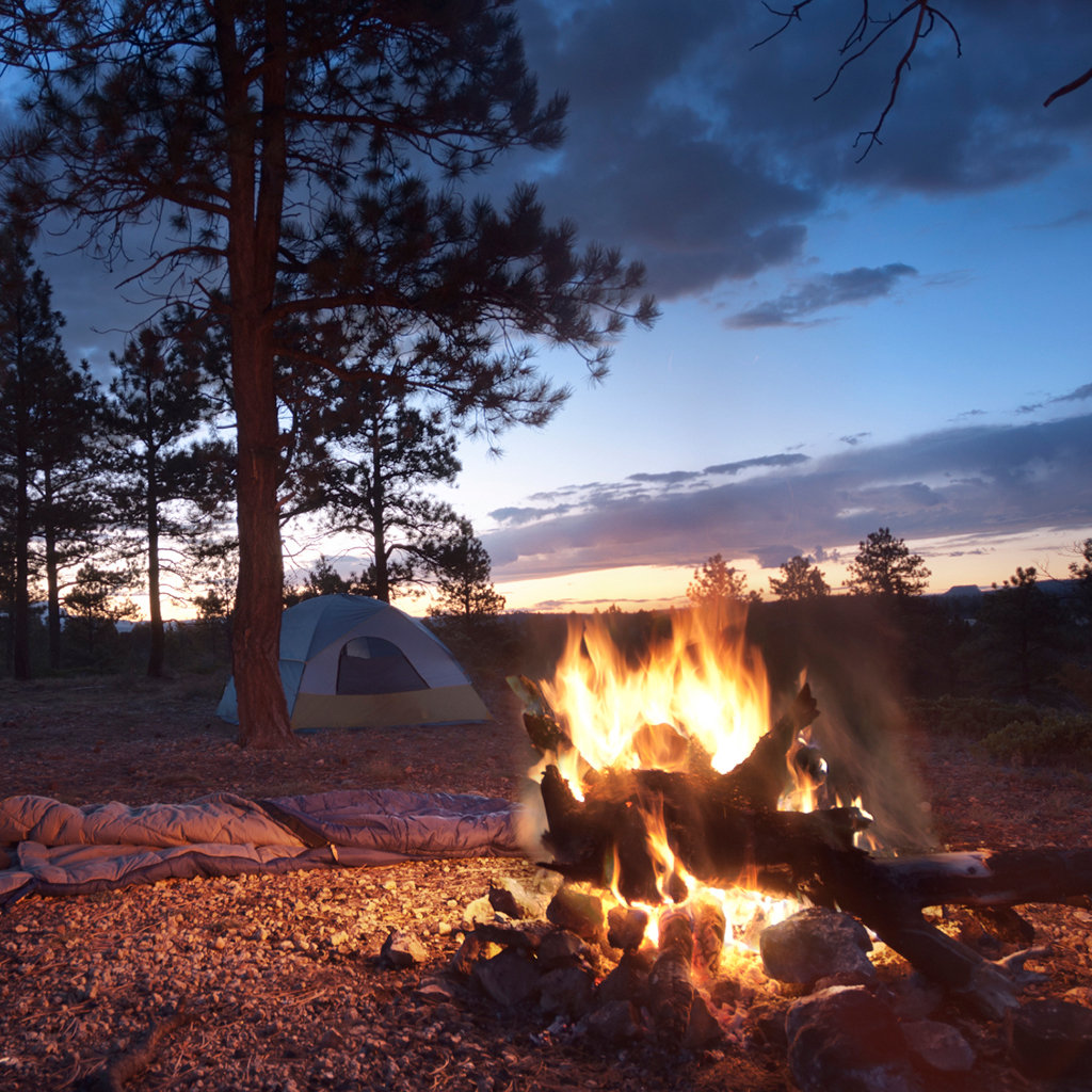 Where To Camp In Jackson Hole Travel Leisure
