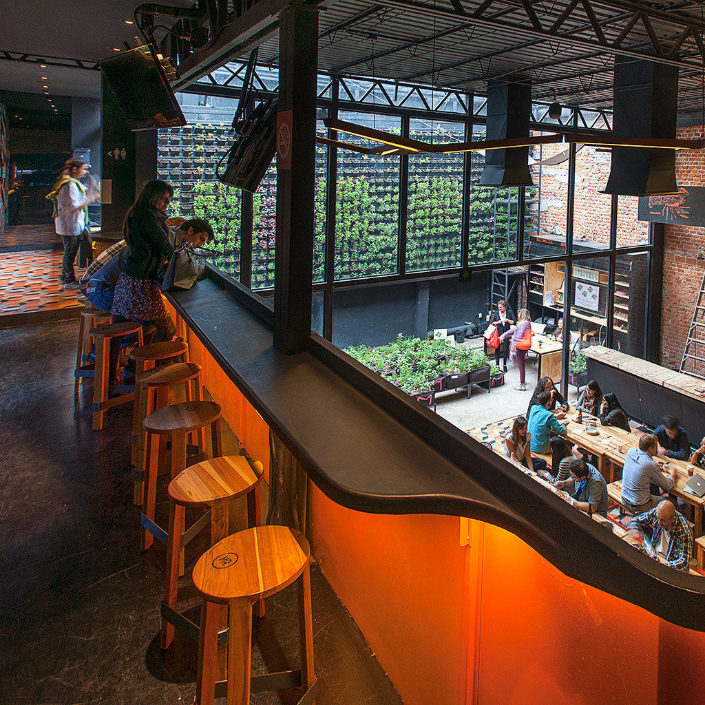 Top Beer Bars in Mexico City