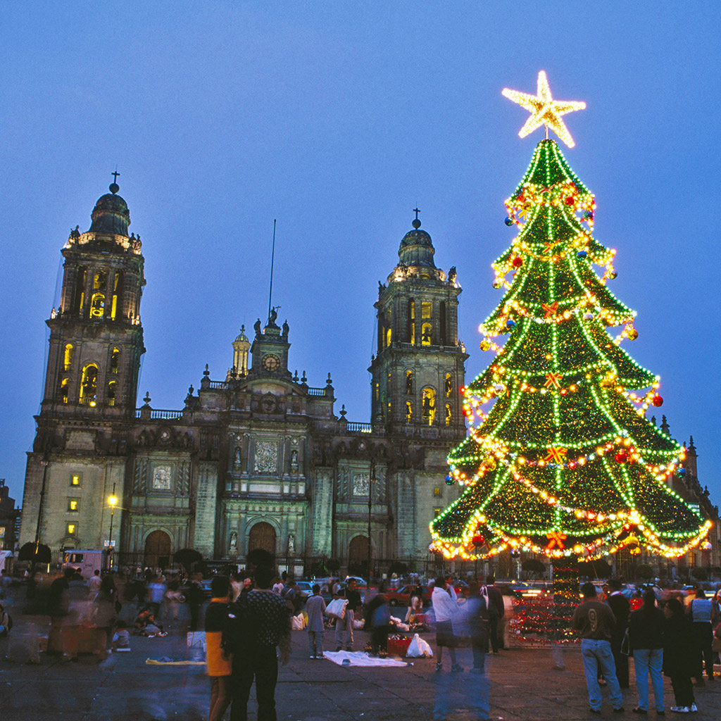 Top Christmas Attractions in Mexico City