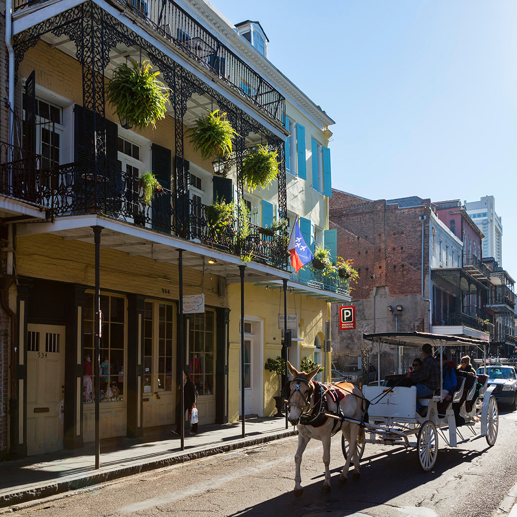 Best Tours in New Orleans