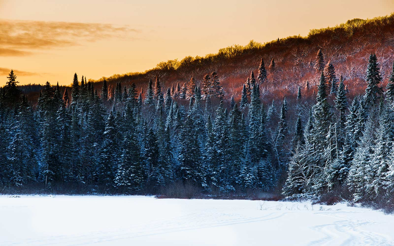 The Most Luxurious Way To See Canada S National Parks This Year Travel Leisure