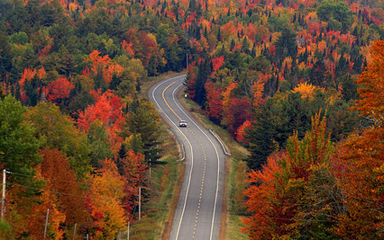 roads through scenic foliage in Moosehead Lake Region, ME