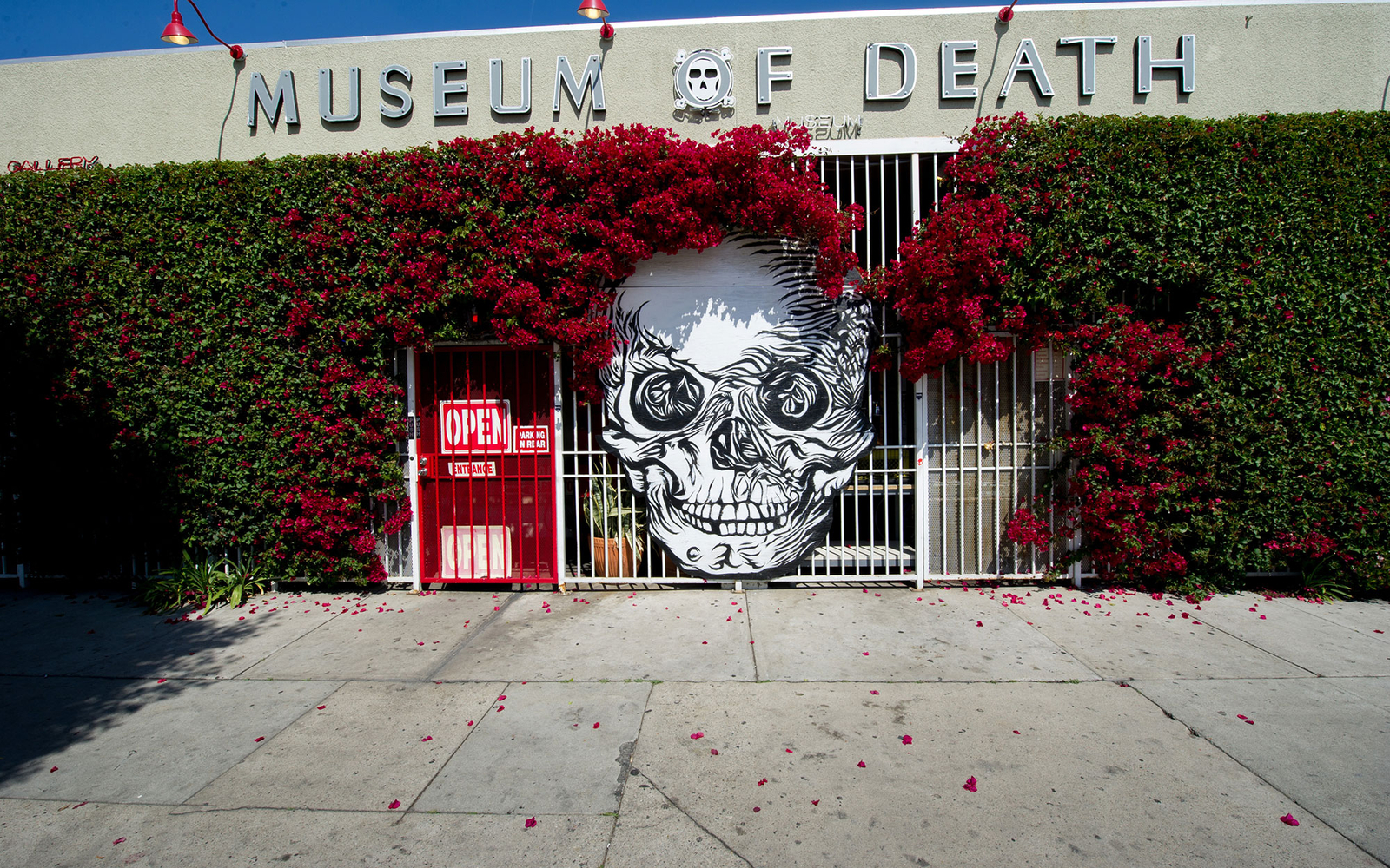 The Museum of Death, Hollywood