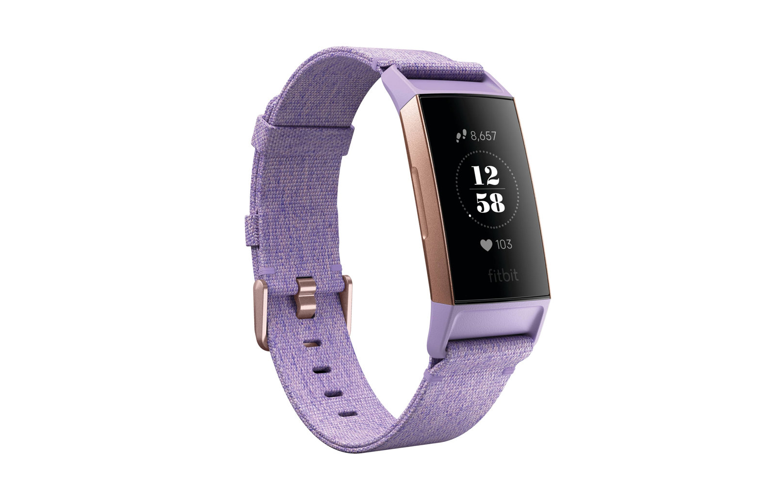 FitBit Charge 2 Special Edition Wireless Activity & Heart Rate Tracker