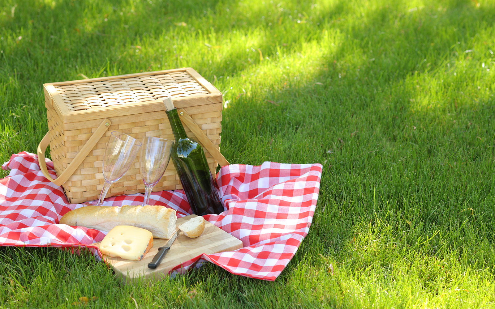 How To Pack a Fail-Proof Picnic