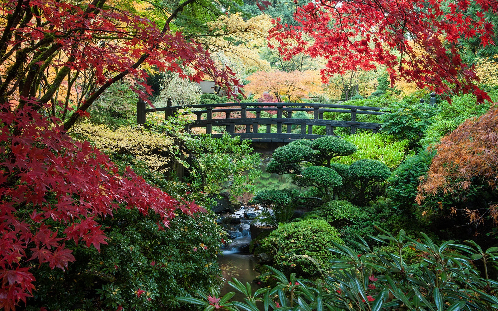 Most beautiful gardens - Portland Japanese Garden Portland Or