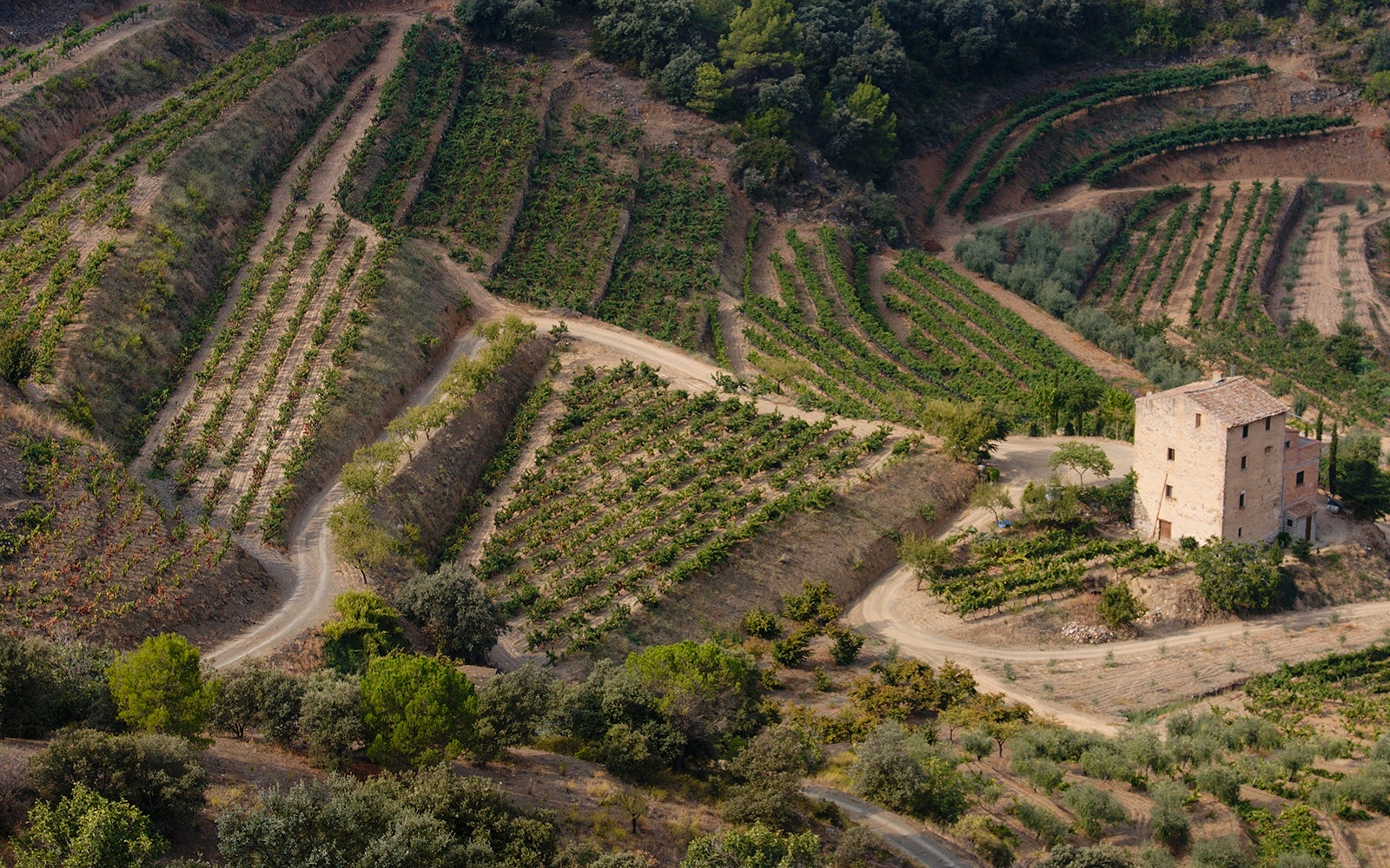 Three Must-Try, Under-the-Radar Wines from Spain's Priorat Region