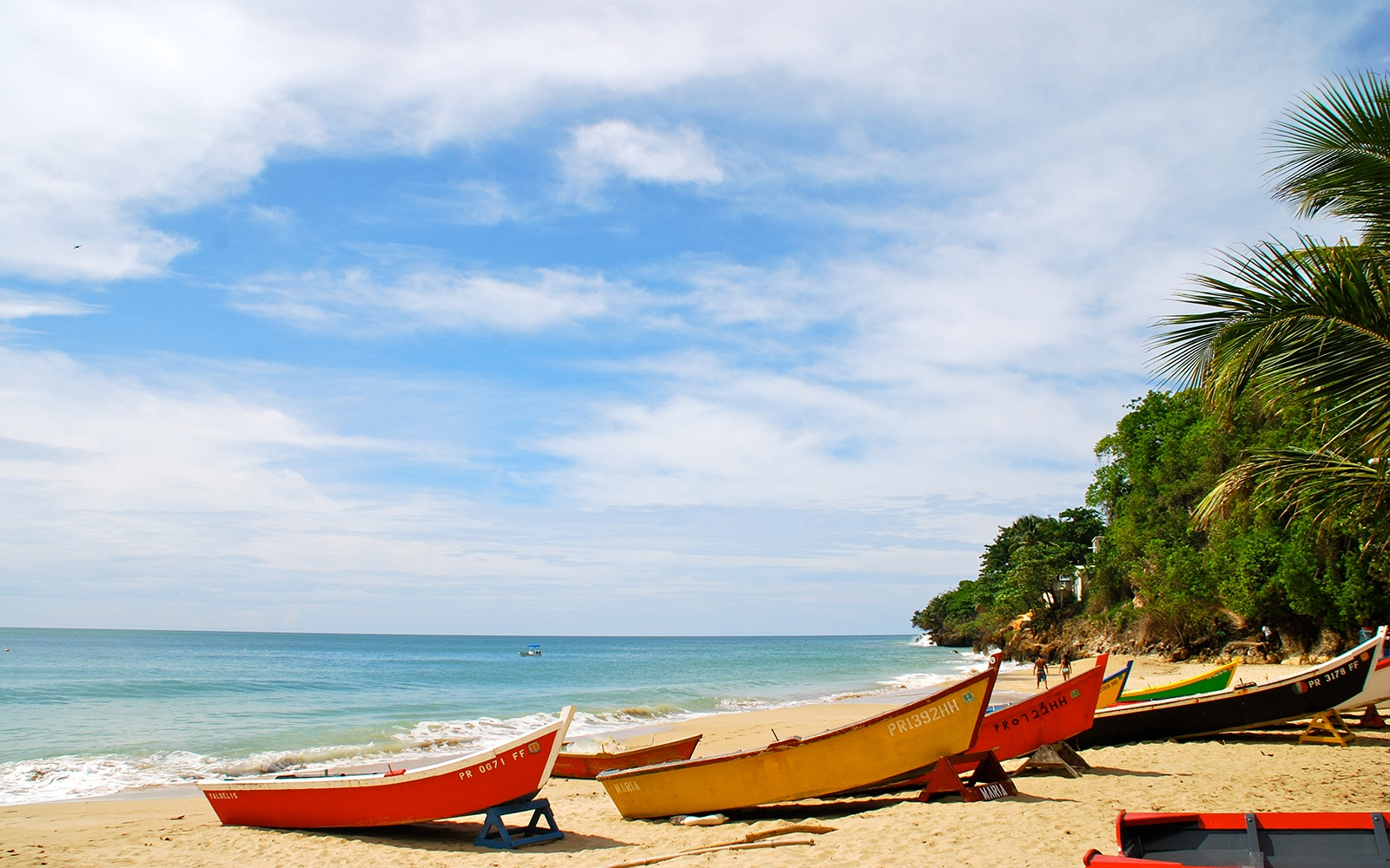 Best places for singles in puerto rico