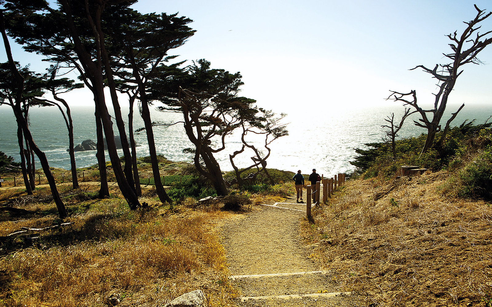 Hiking in San Francisco