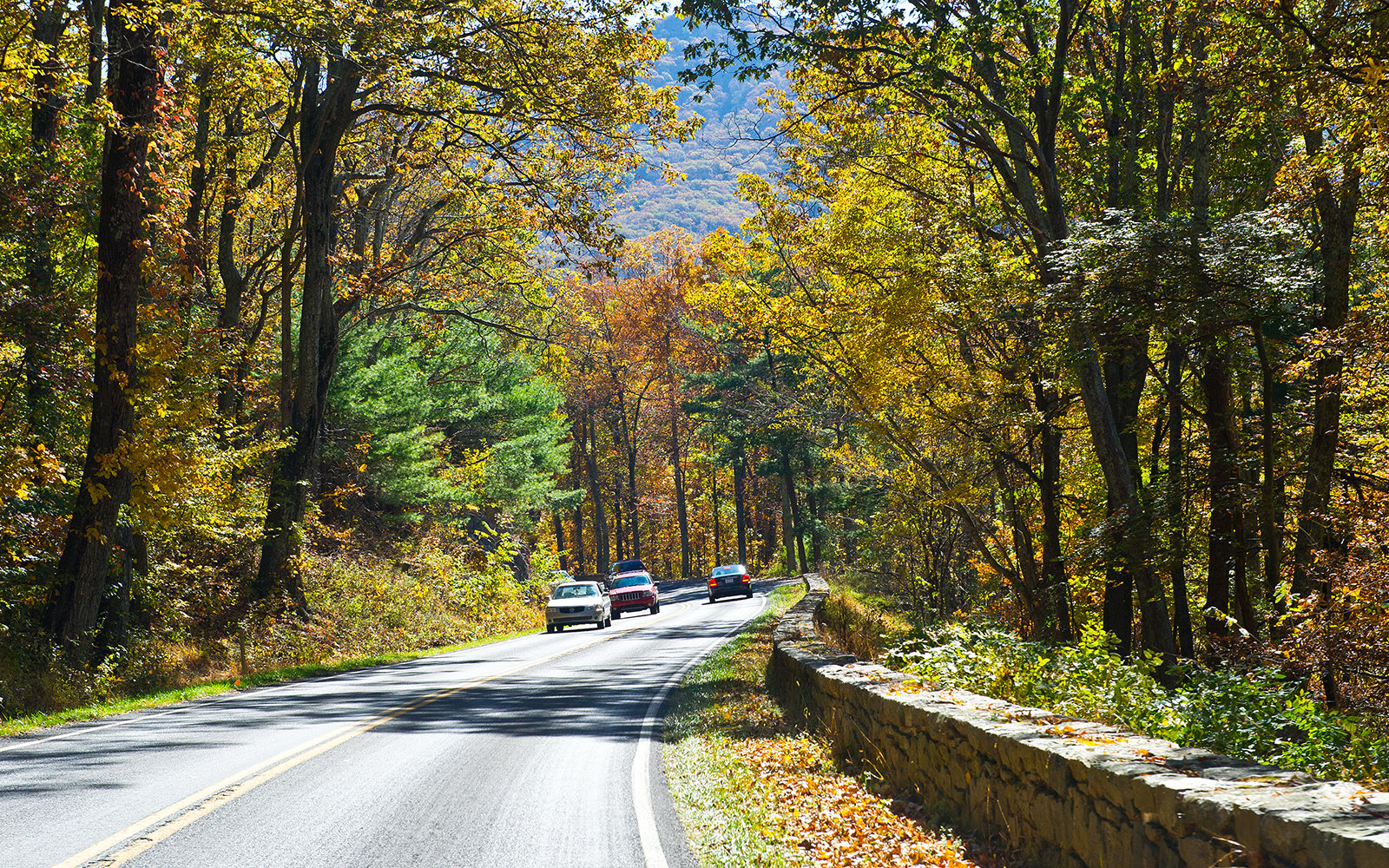 Skyline Drive in Shenandoah