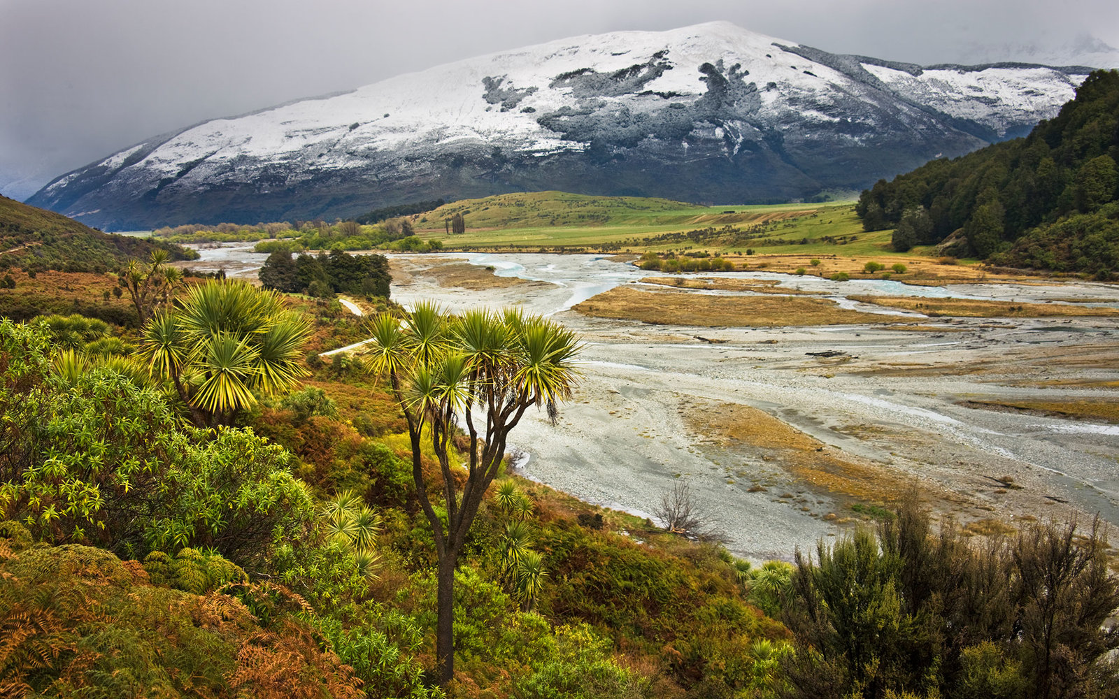 Universities On The South Island Of New Zealand