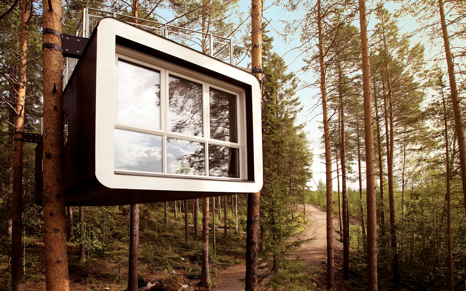 unique Treehotel in Harads, Sweden