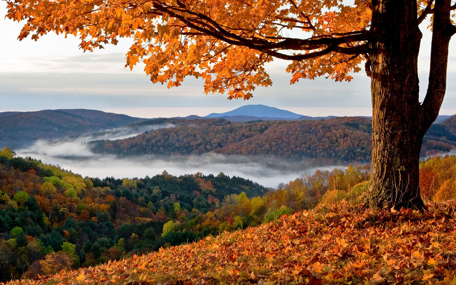 Fall in Vermont.