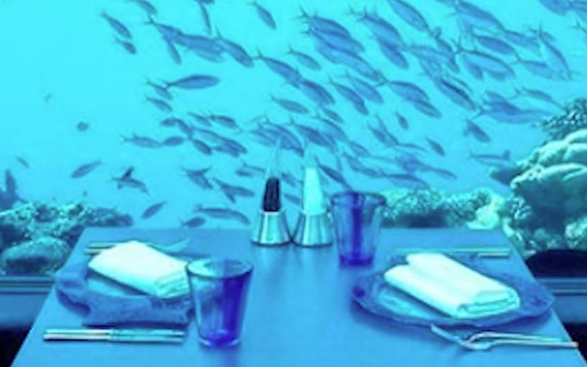 how to dine at the world s first underwater restaurant. Black Bedroom Furniture Sets. Home Design Ideas